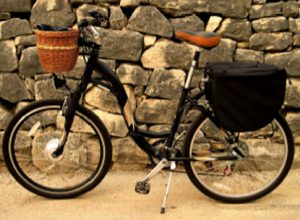 Rent Electric Bike